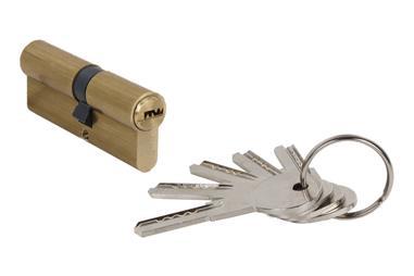 Comprar Cilindro de Seguridad 35/35- Latón-Leva Larga igualados AAA COF-31013535.AAA en Ferretería el Clavo.