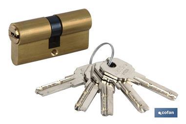 Comprar CILINDRO SEGURIDAD llave normal 30/30 LATÓN-LEVA LARGA COF-31113030 en Ferretería el Clavo.